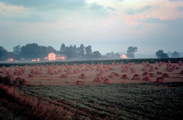 Amish Country Byway - Farmstead in the Mist