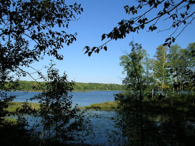 Edge of the Wilderness - A Clear Day on Pughole Lake