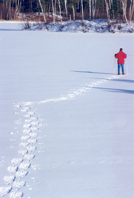 Edge of the Wilderness - Snowshoeing on the Edge of the Wilderness Scenic Byway