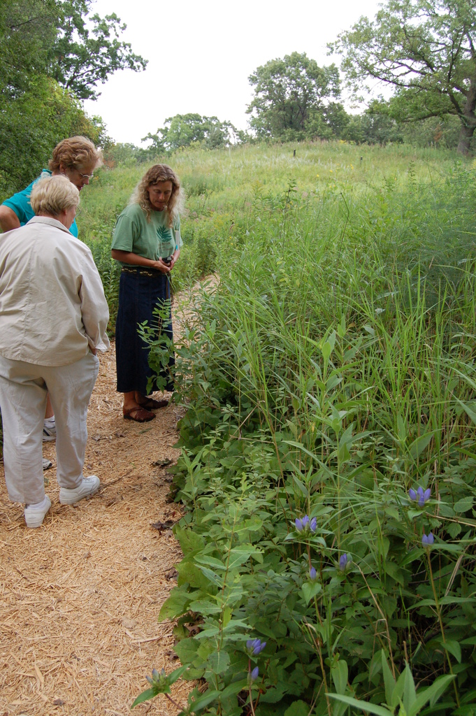 Grand Rounds Scenic Byway - On a Nature Walk at the Wildflower Garden