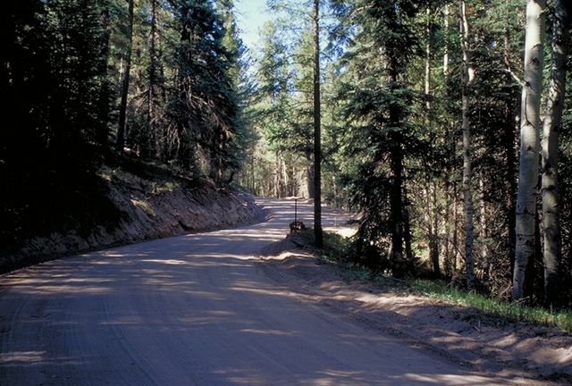 Jemez Mountain Trail - Gravel Section of New Mexico's Route 126