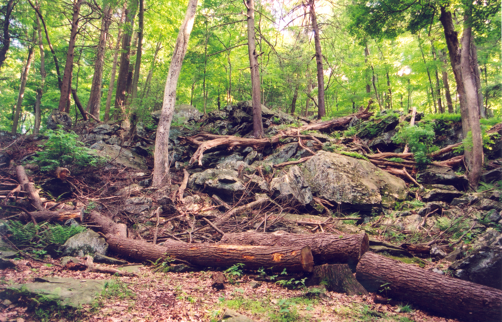Journey Through Hallowed Ground Byway - Green Rock of the Catoctin Ridge of Cunningham Falls State Park.