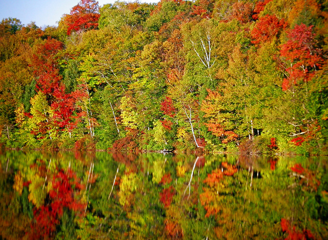 Kancamagus Scenic Byway - Reflections of Fall in Campton Pond