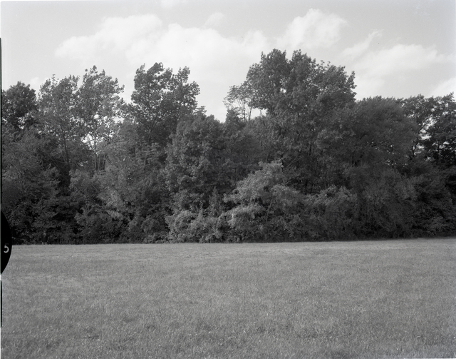 LANDSCAPE BORDERING LAND AT CRYOGENICS ROAD AND WEST AREA