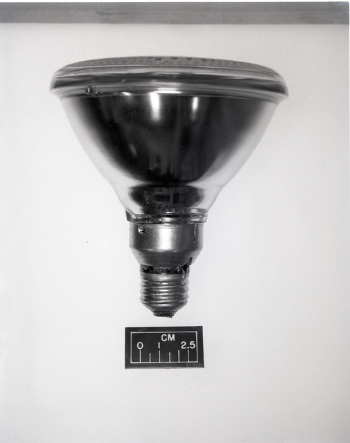 LIGHT BULB FULL SIZE WITH SIZE BAR