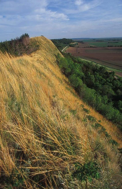 Loess Hills Scenic Byway - Sharp Relief of the Loess Topography