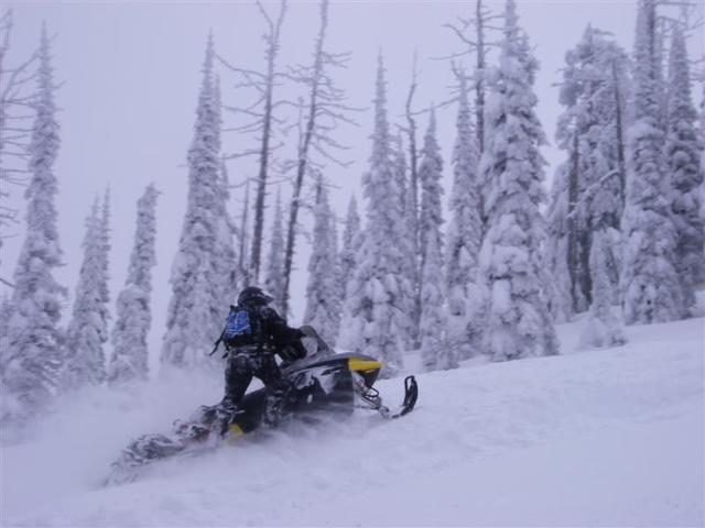 Pend Oreille Scenic Byway - Snow-Covered Trees and Snowmobiling