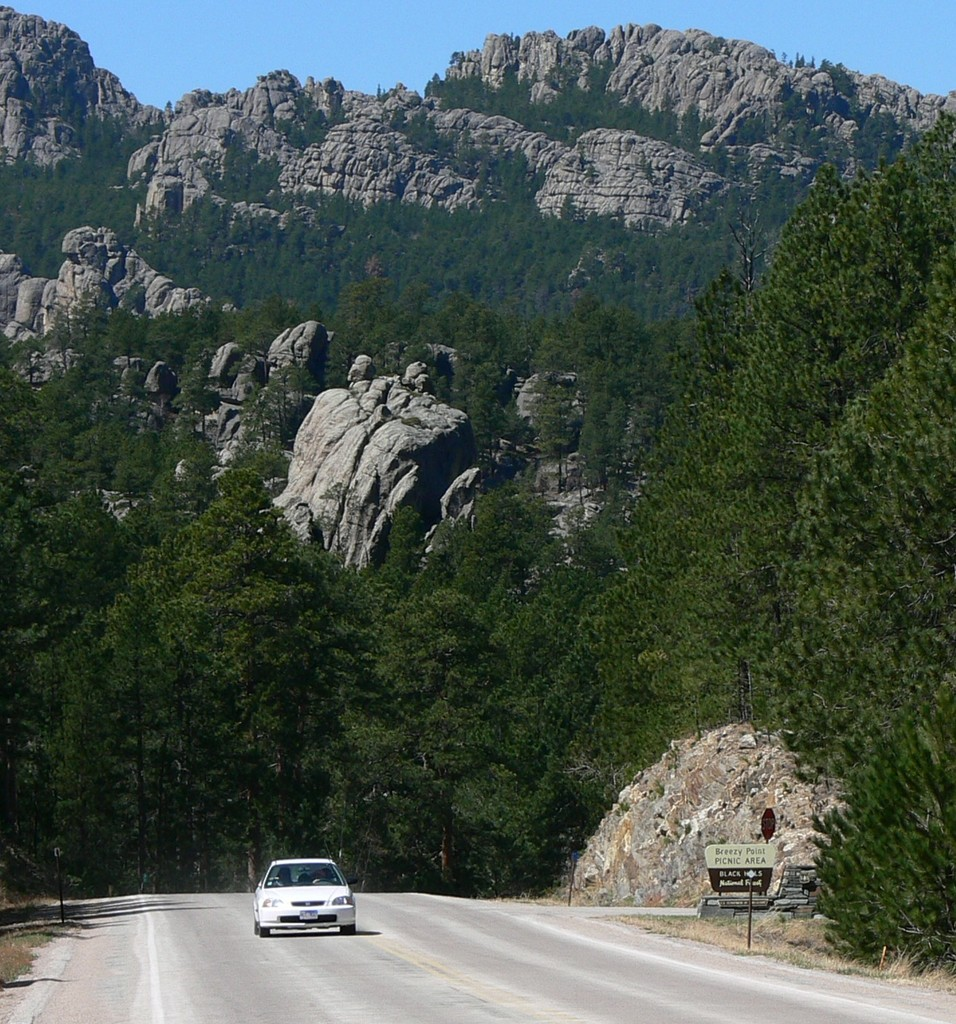 Peter Norbeck Scenic Byway - Peter Norbeck Landscape