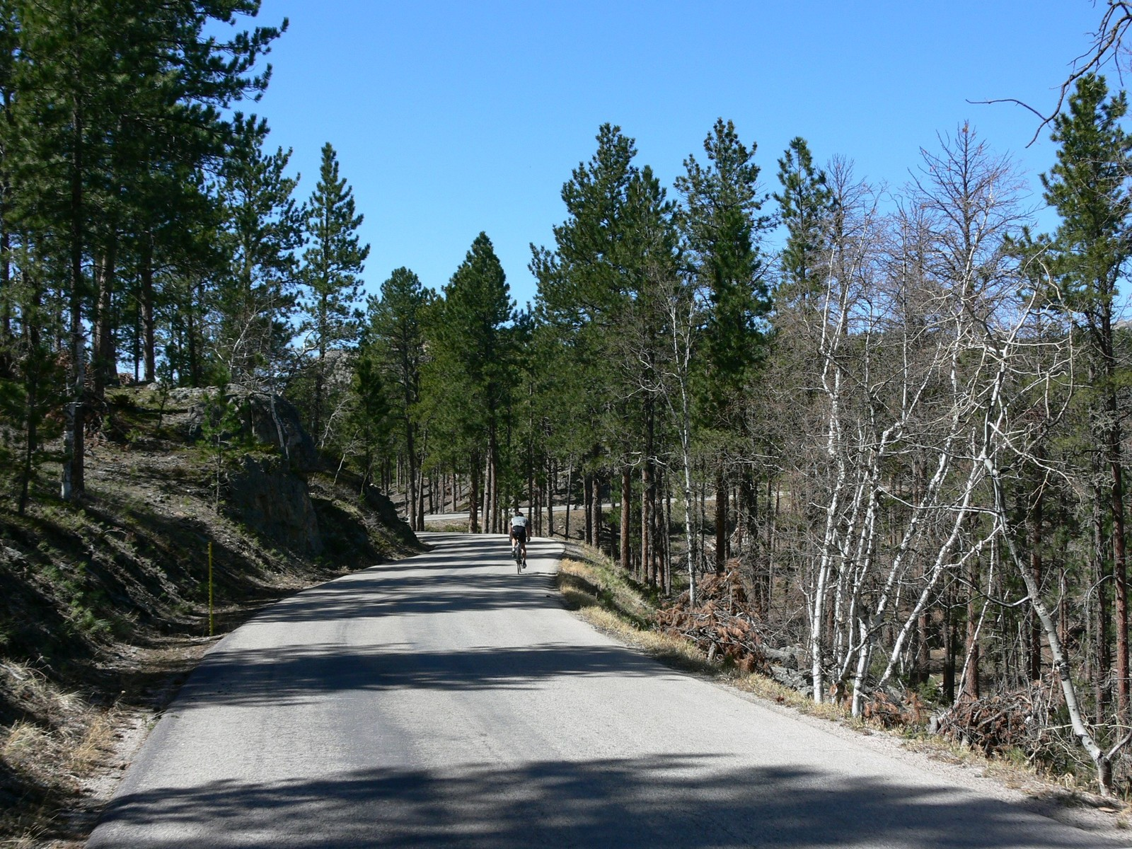 Peter Norbeck Scenic Byway - Peter Norbeck Uphill Climb