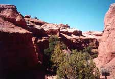 Scenic Byway 12 - Angel's Palace Trail in Kodachrome State Park, UT