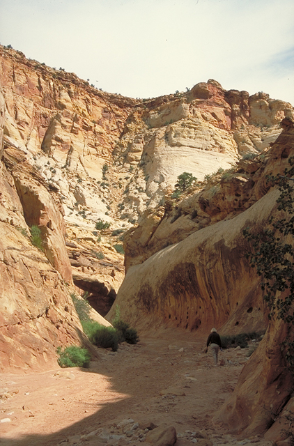 Scenic Byway 12 - Capitol Gorge
