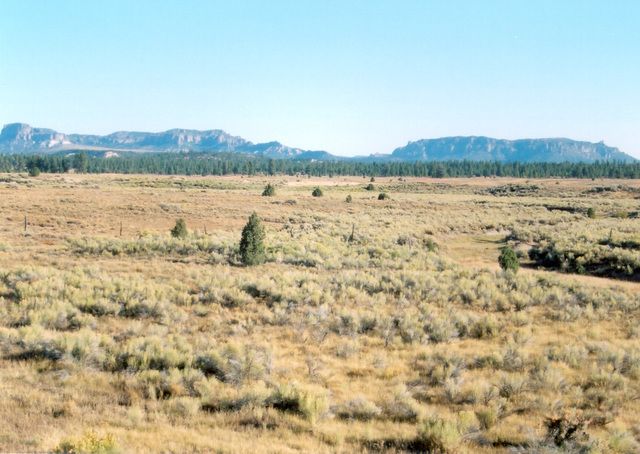 Scenic Byway 12 - The Rugged Wilderness of Scenic Byway 12