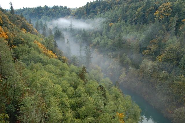 White Pass Scenic Byway - Cowlitz River Below U.S. 12
