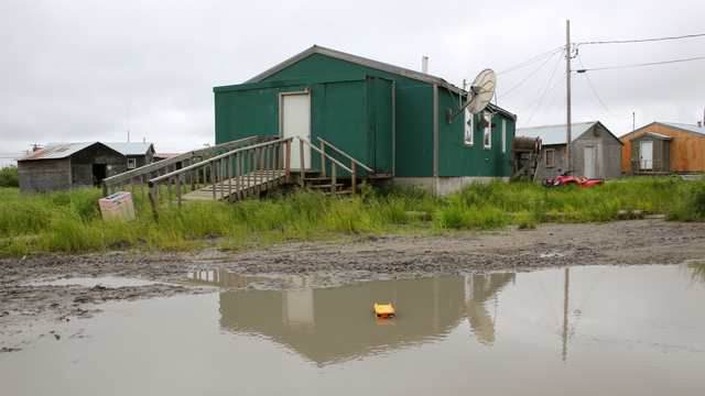 Emmonak, Alaska, July 15, 2013 -- All that remains are mud puddles and saturated tundra in this village after severe flooding innundated the Bourough and caused massive damages to individuals and businesses. Individuals and business owners who sustained losses in the designated areas can begin applying for assistance by registering online at www.disasterassistance.gov or by calling 1-800-621-FEMA. Adam DuBrowa/ FEMA