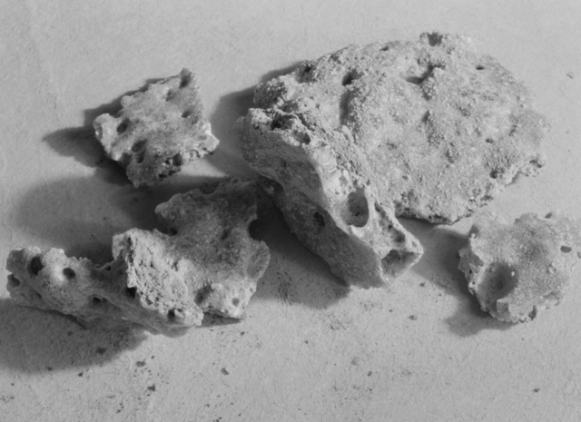 Trinitite (also referred to as Atomsite or Alamogordo Glass.) Samples of atom bombed earth from Trinity nuclear bomb test site, Alamogordo, New Mexico, July 16, 1945. Photograph taken February 18, 1946 in Crocker Lab