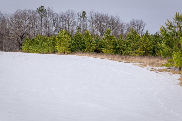 Chesapeake Bay Program Office - Harrisons Farm [412-APD-1422-HarrisonFarm_013.jpg]