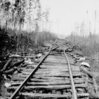 Photograph of a View Showing the Railroad Track of the Virginia and Rainy Lake Lumber Company