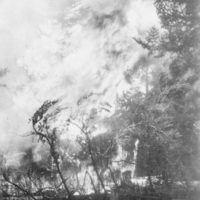 Photograph of a Typical Crown Fire in a Minnesota Spruce Forest