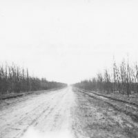 Photograph of Iron River Fire Burned Clean to Mineral Earth