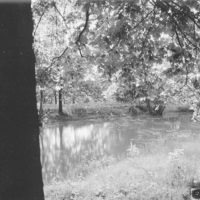 Photograph of Artificial Pond at the Delta Ranger Station Administrative Site in Jonesboro, Illinois