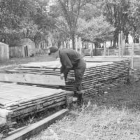 Photograph of Farm Forester Frank Longwood Inspecting Cottonwood Lumber Piled at Berger Brothers Sawmill