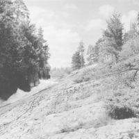 Photograph of Left Arm of Rebecca Falls
