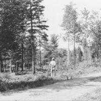 Photograph of Glidden Ranger District