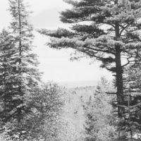 Photograph of Lake Huron as Seen from a Hill on St. Ignace District