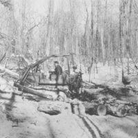 Photograph of Skidding Chemical Wood on Ontonagon Dist