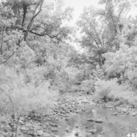 Photograph of Bidwell Creek from Road