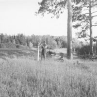 Photograph of Proposed Planting Area on Old Upland Field