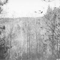 Photograph of Sunken Lake