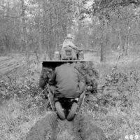 Photograph of Planting under Oaks on Harrisville Ranger District