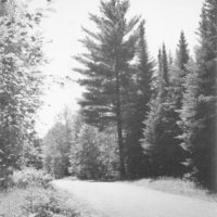 Photograph of Scenic Road on Eagle River District on Nicolet National Forest