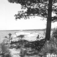 Photograph of Water Skiing on Cass Lake