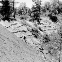 Photograph of Ranger Sanford Silver Looking over Work on Streambank Stabilization