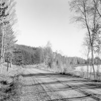 Photograph of FS Road #123 and Mink Lake