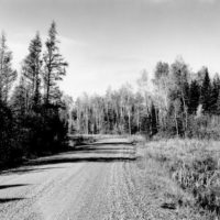 Photograph of FS Road #123 from Near Orchid Lake
