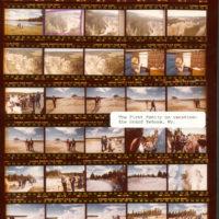 download Le Journal de Kurt Cobain