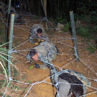 US Marine Corps (USMC) members from Marine Corps Base (MCB), Camp Foster, Okinawa, Japan, crawl under barbed wire obstacles on the Engineer's Course, part of a USMC Martial Arts program at Camp Schwab