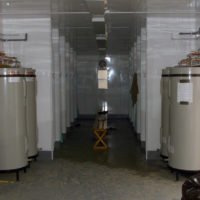 An Interior View Of The Portable Showers Used By US Marine Corps (USMC)  Personnel