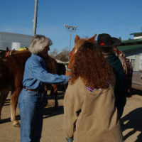 Secretary Gale Norton, left, with horses and equestrian group, making preparations for participation in New Year's Day Tournament of Roses Parade, Pasadena, California. Norton and Take Pride in America Director Martha Allbright rode horseback in the Parade to highlight the Take Pride in America-promoted volunteer commitment to cleanup of California lands devastated by 2003 forest fires