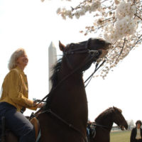 Secretary Gale Norton and others participating in horseback riding and related outdoor events around the National Mall, Washington, D.C., marking the final days of the Norton tenure at the Department of Interior