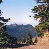 Strait of Juan de Fuca Highway - SR 137 - Tree-Blanketed Hills in Olympic National Park